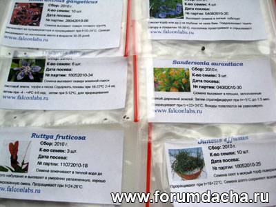 Купить семена, Продажа семян