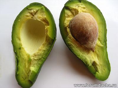 Плод Авокадо, Персея американская, Авокадо посадить