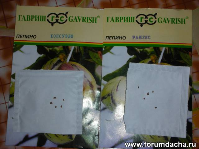 Семена Пепино
