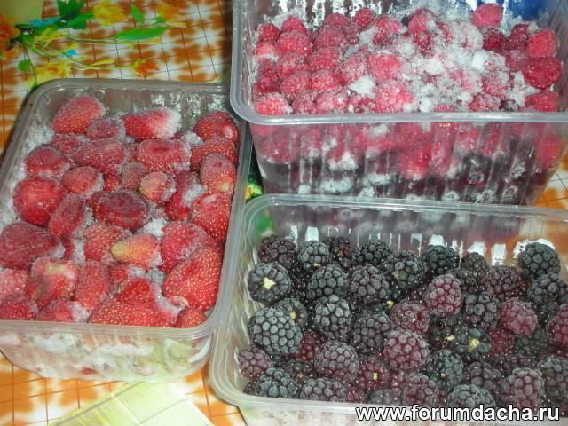 Какие фрукты можно замораживать на зиму в домашних условиях 803