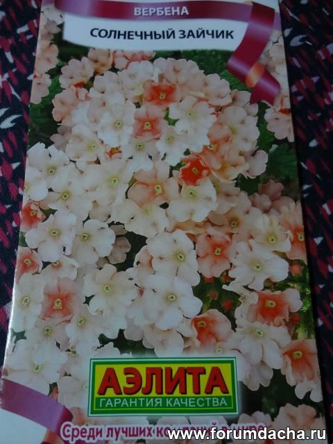 знакомсево и общение ставропольский край