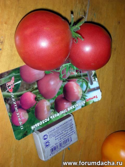 Сорт томатов «Японский трюфель розовый», Японский трюфель розовый, Помидор Японский трюфель розовый, Томат Японский трюфель розовый