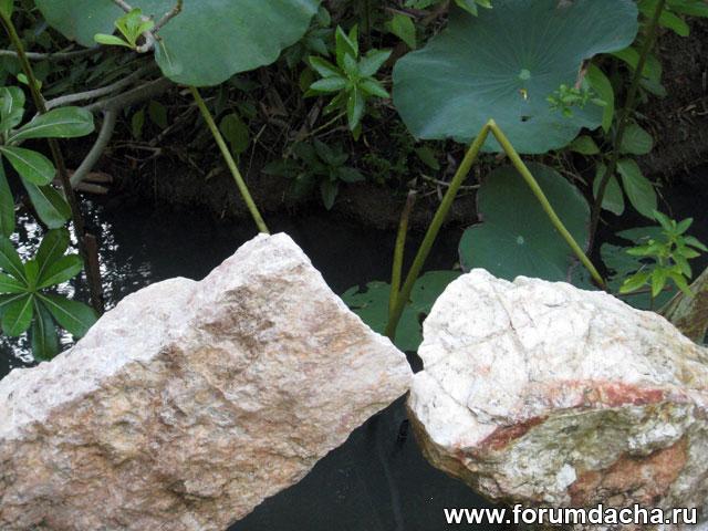камень в дизайне